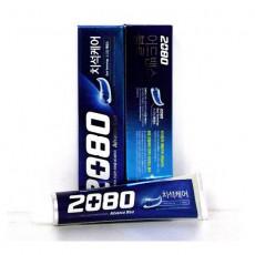 2080블루치약 120g
