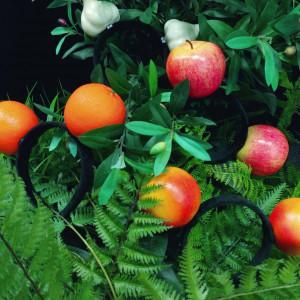 리얼 과일 머리띠 7종